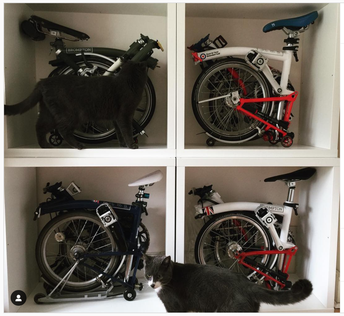 "Bike Gang on Instagram_ ""My #brompton wall. IKEA Kallax"